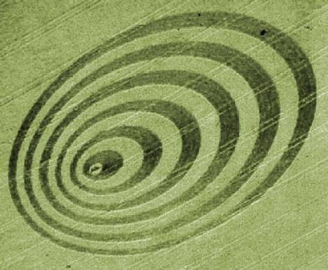 p0232_cissbury_ring_crop_circle_0109.jpg
