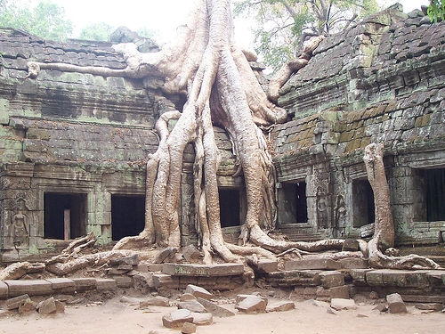 Angkor-Wat-Cambodia-ta-prohm-red-betty-black.jpg